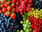 Bogyós gyümölcsfák kertészetből