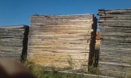 Fenyőfa foszni száraz