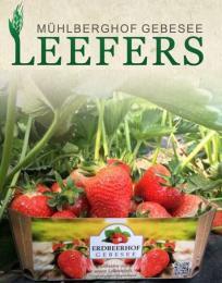 Kertészmérnök/Agrármérnök, Németország