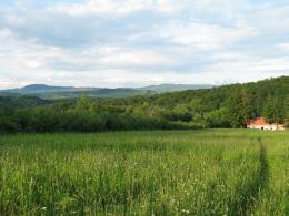 Távol falutól, hegyen, erdő mellett ház gyümölcsössel, kút.